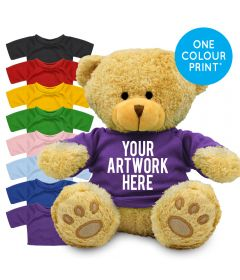 Printed Golden 22cm Edward bear with Coloured t-shirt